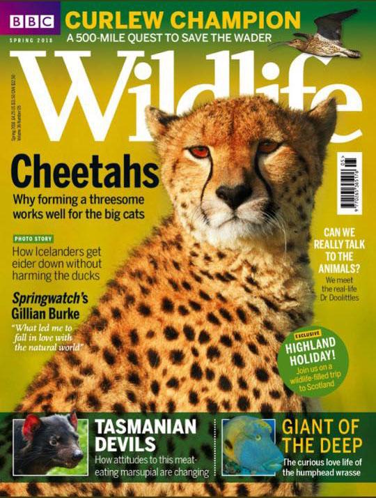 BBC Wildlife magazine Spring issue 2018