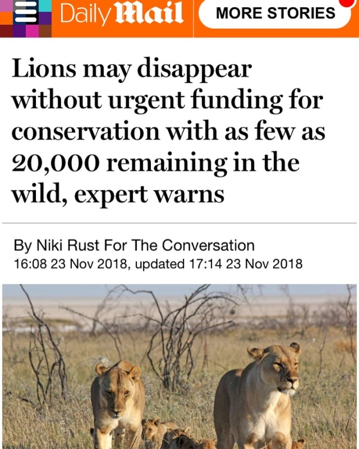Lions may disappear without urgent funding